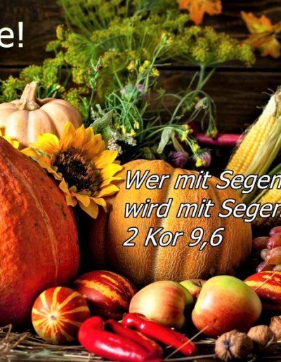Tersteegen-Newsletter Nr. 43  18. Oktober 2020